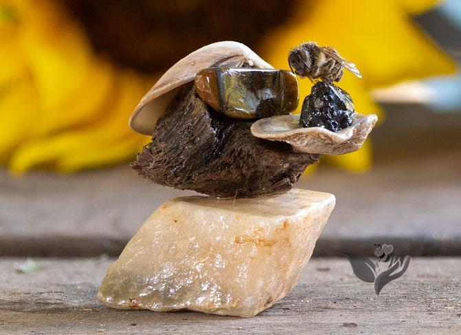 Bee Balanced